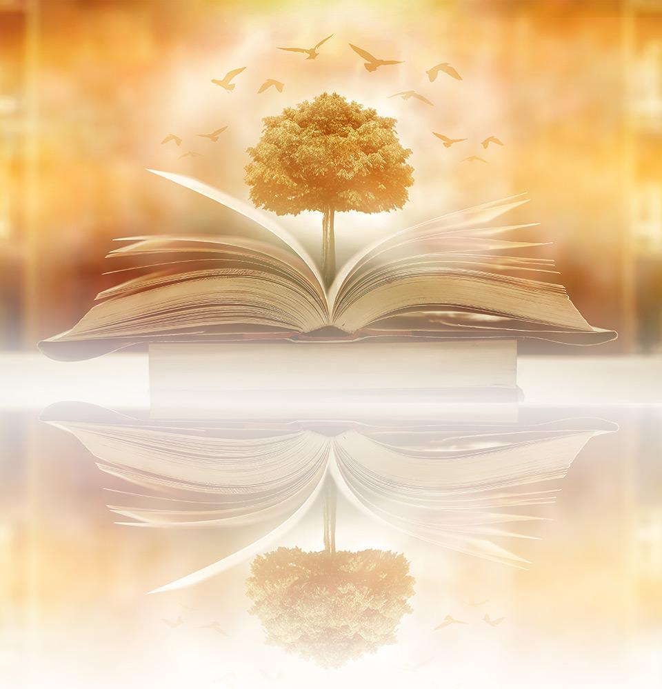 arbre de vie sur la bible